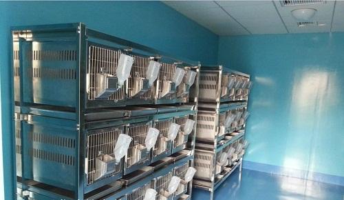 标准动物房设计的基本要求